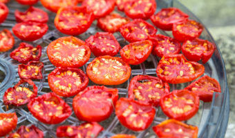Gourmia GFD1650 Premium Countertop Food Dehydrator Review